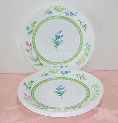 Amazon com | Corelle My Garden SET/6 ~Accent Salad Plates 7