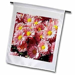 Florene Flower - Pink Daisies - 18 x 27 inch Garden Flag (fl_57643_2)