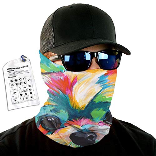 Colorful Dog Headband Head Warp Sport Scarf Tube Mask Bandana For Men Women Headwear