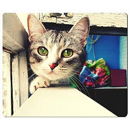Cats Green Eyes Pets Window Pane Rectangle Mouse Pad (C062)