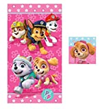 Paw Patrol Skye Girl Bath Towel Washcloth 2 Piece