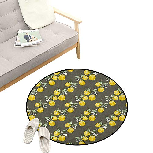 Floral Round Rug ,Lemon Branches with Petals Growth Essence Nature Themed Artsy Print, Flannel Microfiber Non-Slip Soft Absorbent 47