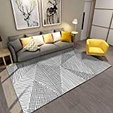Living Room Rugs, 4'x 6' YAMTION Modern Multi-Function Area Rugs Collection, Non Slip Abstract Striped Black Soft Shaggy Carpet, Indoor Bedroom Rugs in Nursery, Dining Room, Office, Dormitory