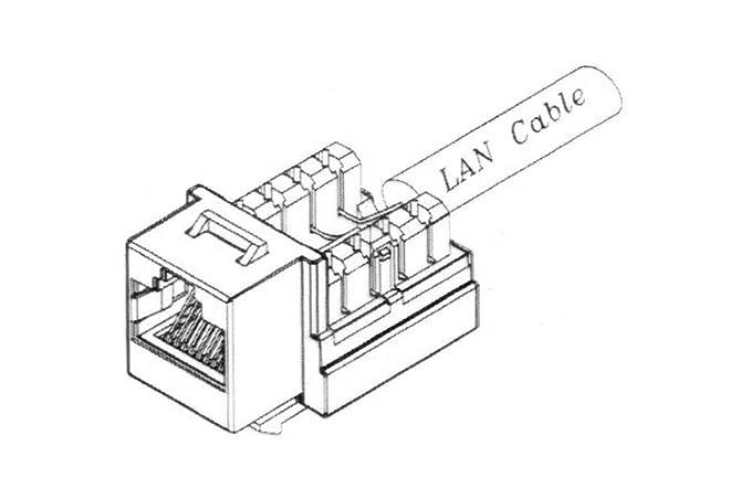 Siemon Jack Wiring Diagram Jack Parts Diagram Wiring