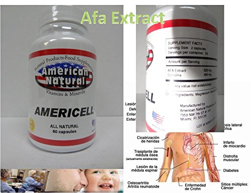 Amazon.com: Americell Bioxtron Bioxcell Biomatrix Celulas Madres Biomatrix AFA Algae Bioxmax: Health & Personal Care