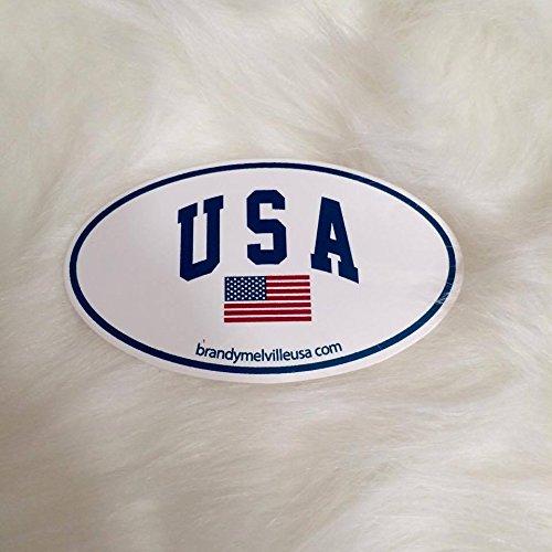 - Brandy Melville Sticker USA american flag oval