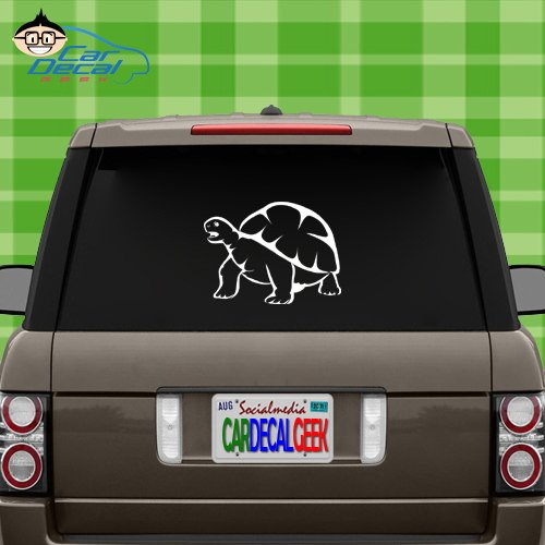 Tortoise Reptile Vinyl Decal Sticker for Car Truck Window Laptop MacBook Wall Cooler Tumbler | Die-Cut/No Background | Multiple Sizes and Colors, 8-Inch, White