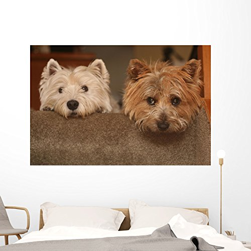 Wallmonkeys Westie and Cairn Terriers Wall Mural Peel and Stick Graphic (60 in W x 40 in H) WM8059 ()