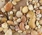 Safe & Non-Toxic {Various Sizes} 20 Pound Bag of Gravel, Rocks & Pebbles Decor for Freshwater Aquarium w/ Earthy Toned Smooth Polished Sleek River Inspired Natural Style [Tan & White]