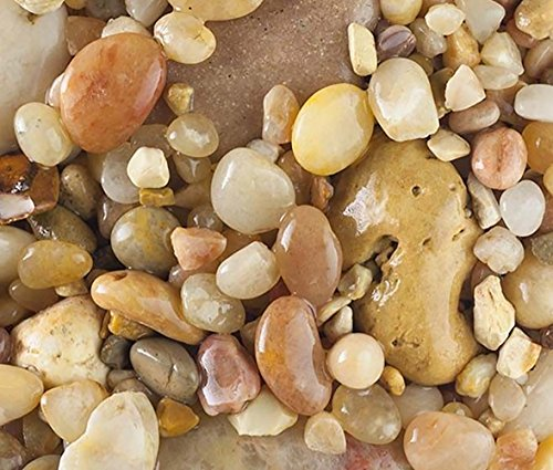 Safe & Non-Toxic {Various Sizes} 20 Pound Bag of Gravel, Rocks & Pebbles Decor for Freshwater Aquarium w/ Earthy Toned Smooth Polished Sleek River Inspired Natural Style [Tan & White] by mySimple Products