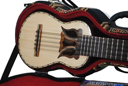 Charango Boliviano de la Paz W Hard Case & Book & DVD & Soft Case: Amazon.es: Instrumentos musicales