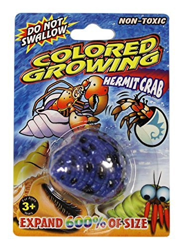 Grow a Crab Just Add Water Hermit Crab (Blue Spot)