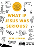 What If Jesus Was Serious?: A Visual Guide to the