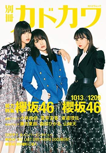 別冊カドカワ 最新号 表紙画像