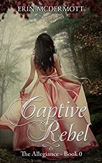 Captive Rebel by Erin McDermott ebook deal