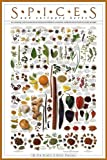 Spices and Culinary Herbs von Tim Ziegler and Bryan Keating Kunstdruck