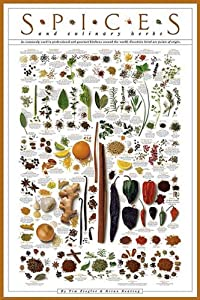Amazon.com: Spices and Culinary Herbs Collections Art Poster Print ...