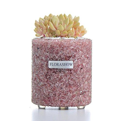 (FLORASHOW Tumbled Stones Succulent Pot - Strawberry Quartz3.26 inch Handmade SucculentPlanter, Great for Reiki Healing Home Decorations, Suitable for Succulents, Cactus, Perfect Gift Idea)