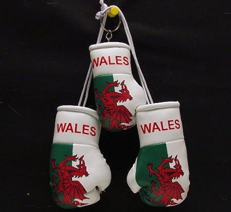 Mini guantes de boxeo para coche Gales + galés Llavero ...