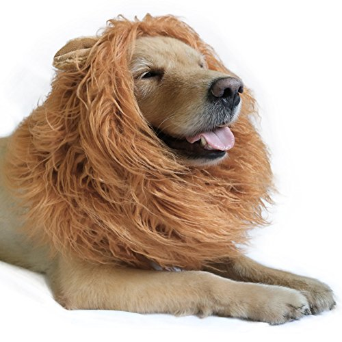 (DIBBATU Lion Mane for Dog-Dog Costume Lion Wig for Large or Medium Dogs Halloween Fancy Hair (Light)