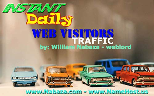 The Basic Principles Of Buy Web Traffic By State