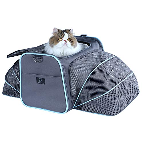 A4Pet Collapsible Cat Carrier Soft Side Cat Carrier Pet Transport Carrier