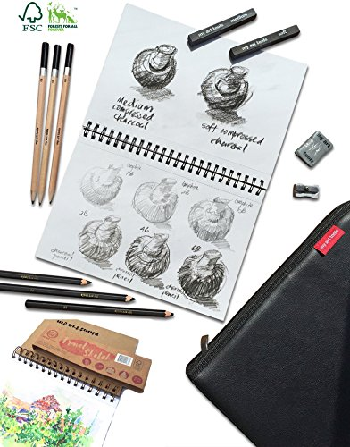 10 pcs art set supplies include (refillable) 220gsm thick, spiral bound sketch book for drawing and watercolor wash, quality to go pencils case (black) , graphite, charcoal sticks by My Art Tools (Black 1 Twin 1 White)