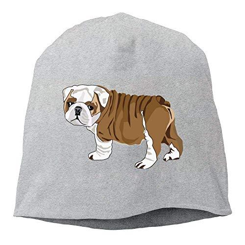 (Daily Beanie Hats Bulldog Puppy Men's Warm Winter Cuff Watch Cap Classic AshOne)