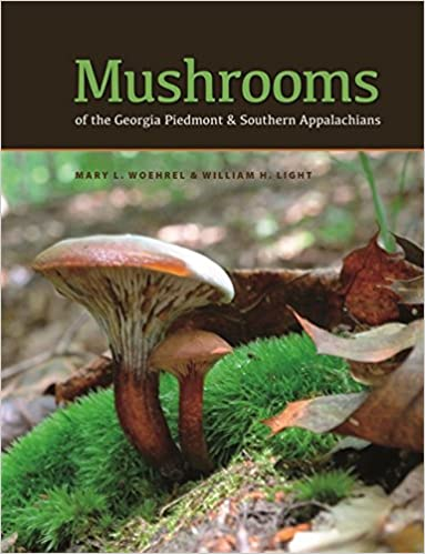 appalachian mushroom pictures pictures of wild mushrooms