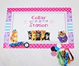 Glam Kitty Cat Pet Adoption Party Supply Theme (Collar Decorating)