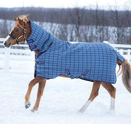 Horseware Rhino Pony All In One 400g Blanket 66 by Horseware Ireland (Image #3)