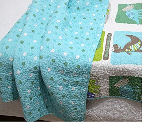 Dinosaur Blankets for Kids: Amazon.com