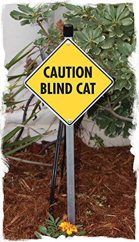 Caution! Blind Cat Aluminum Cat Sign (6