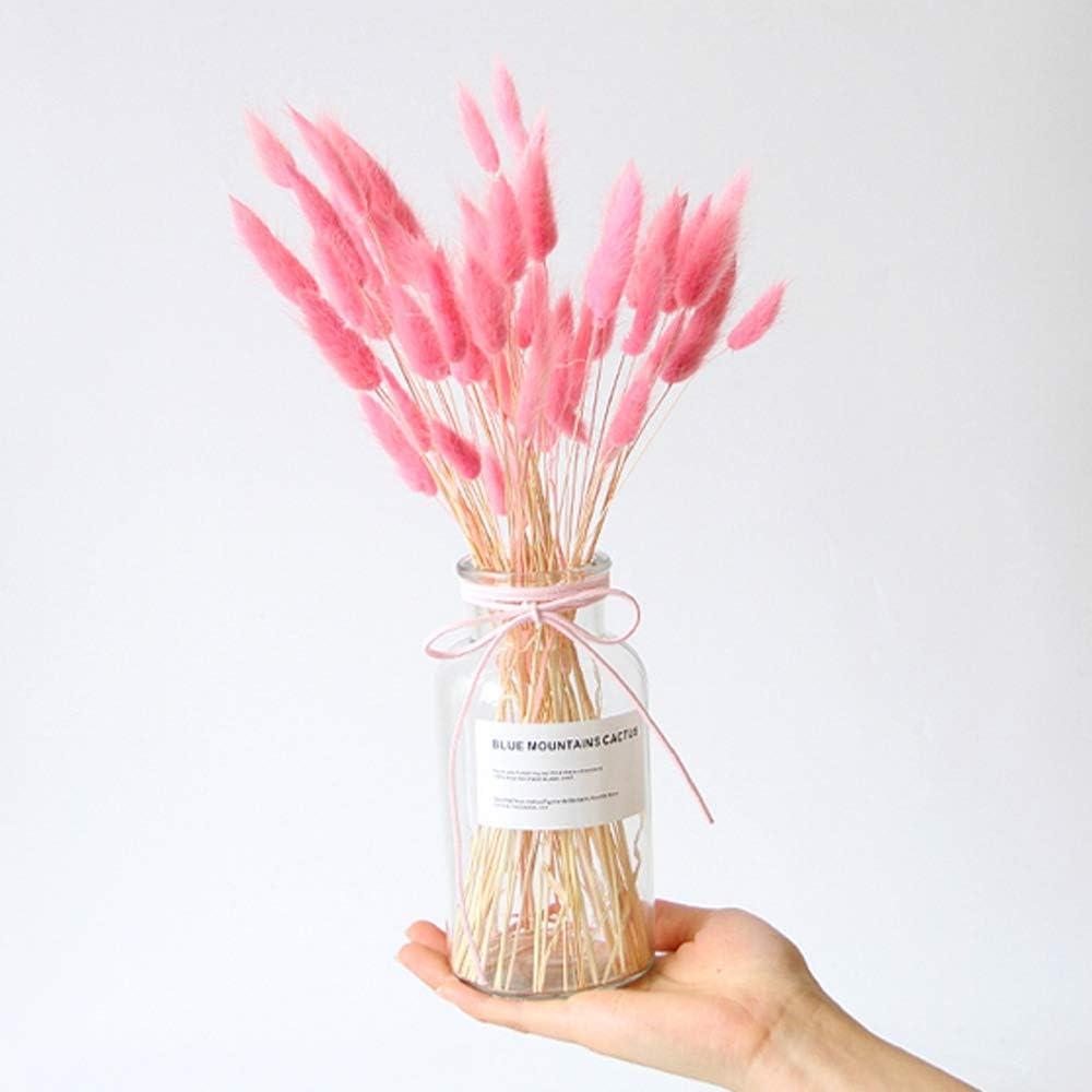 Christineee Les uraria Le Style de Pastorale des Bouquets de Fleurs Le Tournage des Accessoires Black s/éch/ées comme /ça de lherbe Bunny Pile