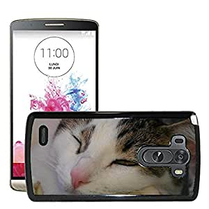 Hot Style Cell Phone PC Hard Case Cover // M00108711 Cat Pet Cute Face Cat Kitty Feline // LG G3 VS985