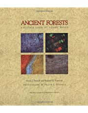 Ancient Forests: A Closer Look at Fossil Wood