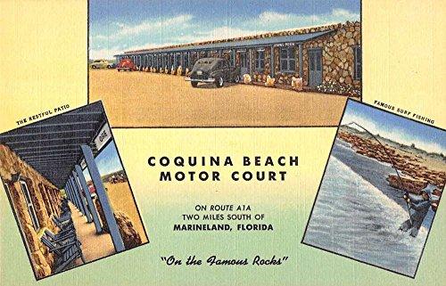 Marineland Motor (Marineland Florida Coquina Beach Motor Court Antique Postcard K36414)