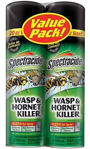 Spectracide Wasp and Hornet Killer Aerosol, 20-Ounce, 2-Pack (Best Wasp And Hornet Spray)
