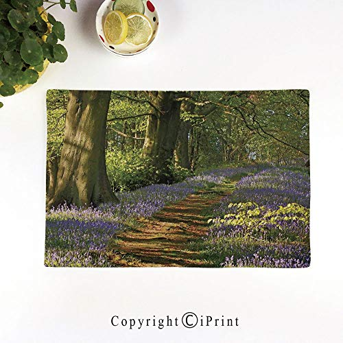 "LIFEDZYLJH Linen Handcrafted Placemats,Set of 6,17.5""x11.5""Flax Table Mats,Machine Washable,A Carpet of Bluebells Spreads Through The Woodland in Staffordshire England,Green Purple Brown"