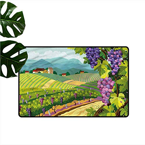 Bath mat,Vineyard Houses Italian Town Valley,Easy Clean Rugs,24