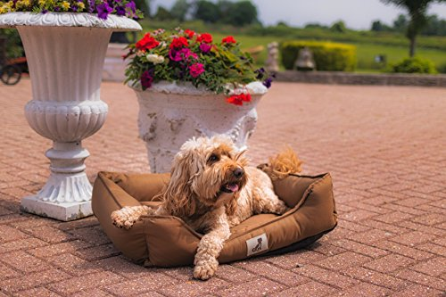 AllPetSolutions Dexter Dog Bed - Soft Waterproof Washable Hardwearing Basket 2
