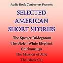 Selected American Short Stories Audiobook by Washington Irving, Mark Twain, Ambrose Bierce, Edith Wharton, Edgar Allan Poe Narrated by John MacDonald, Grover Gardner, Christopher Hurt, Flo Gibson, Jack Hrkach