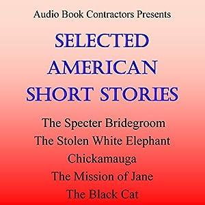 Selected American Short Stories Audiobook