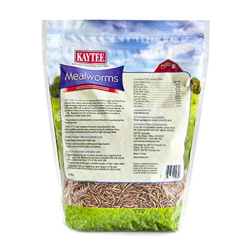Kaytee Dried Mealworms for Chickens and Wild Birds by Kaytee (Image #1)