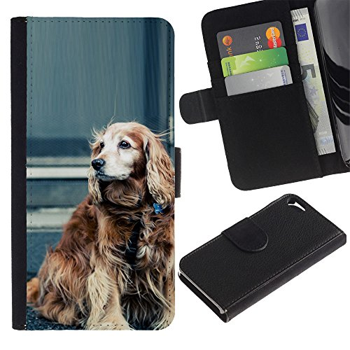Billetera de Cuero Caso del tirón Titular de la tarjeta Carcasa Funda del zurriago para Apple Iphone 5 / 5S / Business Style Cocker Spaniel Field Water Dog Springer
