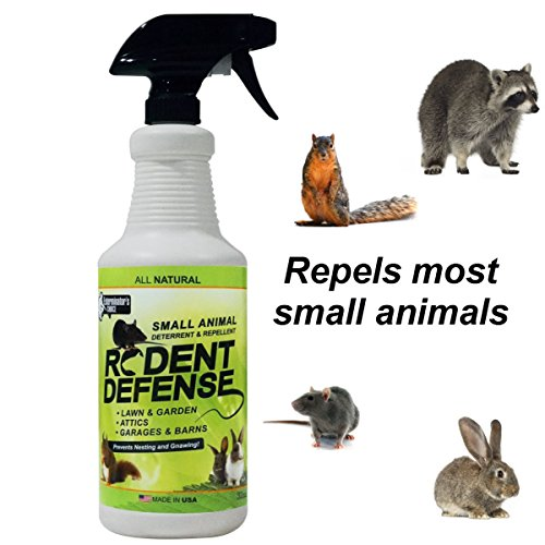 All Natural Rodent Defense Spray Effective Repellent For Mice,Rats,Squirrels,Rabbits,Gophers,Raccoons&Most Small Animals Outdoor &Indoor Mouse Deterrent For The Garden,Garage, Trash Cans