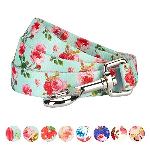 - Blueberry Pet Durable Spring Scent Inspired Floral Rose Print Turquoise Dog Leash 5 ft x 3/4