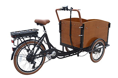 CET-36 Classic Electric Dutch Cargo Tricycle Classic Electric Dutch Cargo -