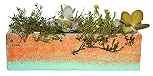 Happy Planter Rectangle Natural Cement Fiber Planter, Size - 30 x 12.5 x 9, Color - Moderno Collection