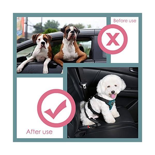 51UkM%2BMzpPL SlowTon Doppelt Hund Sicherheitsgurt, Doppelhaustier-Sicherheitsgurt Verstellbarer mit elastischem Bungee und…